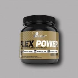 FLEX POWER - OLIMP - 504G