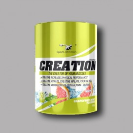 CREATION - SPORT DEFINITION - 485G