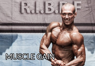 Muscle Gain